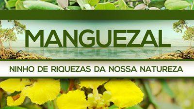 SEMA lança projeto Manguezal: Conhecer para proteger
