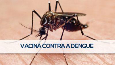 País inicia testes da vacina contra a dengue em humanos