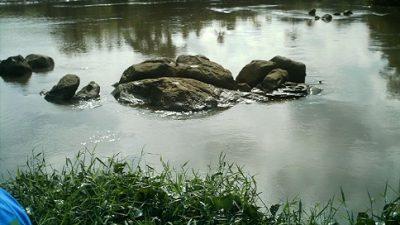 SEMA realizou visita ao Rio Joanes