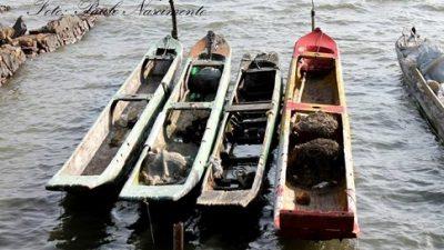 São Francisco do Conde realizará Regata de Canoas