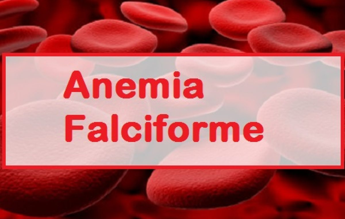 Saúde capacita profissionais da rede municipal sobre Anemia Falciforme
