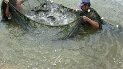 SEMA promove curso de Educação Ambiental para pescadores e marisqueiras