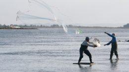 Defeso Inverno comecará a ser pago aos pescadores e marisqueiras