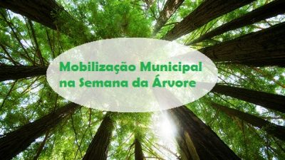 SEMA promoverá Mobilização Municipal pela Semana da Árvore