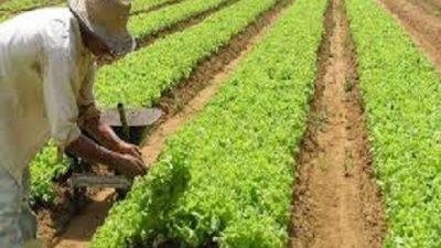 Lei Municipal torna Utilidade Pública Municipal a Associação dos Produtores Rurais de Caípe de Cima