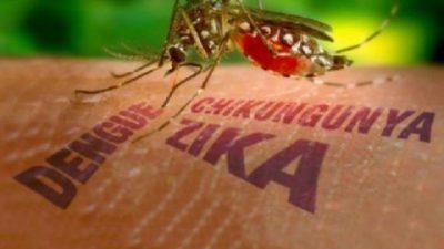 SESAU realiza ações preventivas contra a dengue, a zika e chikungunya