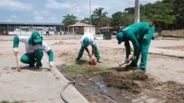 Mutirão de limpeza contra Dengue, Zika, Chikungunya e febre amarela segue para Paramirim