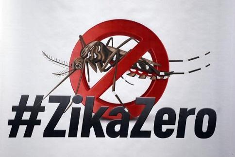 dengue zika aedes