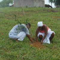 Secretaria do Meio Ambiente fez plantio de árvores na Santa Rita