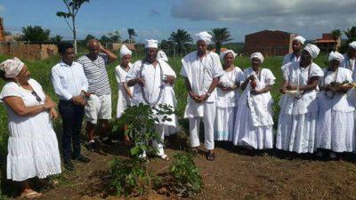 Dia da África: Plantio de uma muda do Baobá foi realizado no Ilê Odé Asé Obá Omin