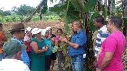 SEMAP promoveu curso de Cultivo de Mandioca na comunidade de Jabequara das Flores