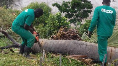 Equipes da SESCOP realizaram novas ações pelo município
