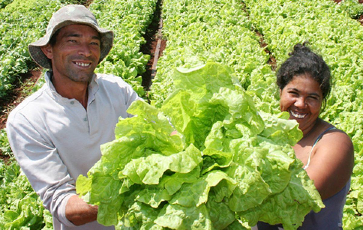 Agricultores do município serão certificados dia 29 de agosto