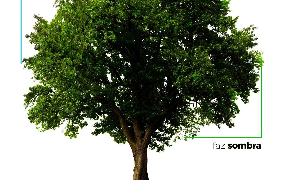 Atividades educativas e entrega de mudas marcaram o Dia da Árvore
