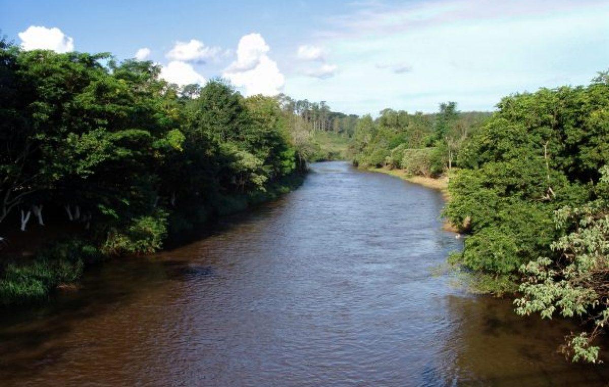 Projeto Reabilitação Florestal de Áreas de Preservação Permanentes dos rios Joanes e Jacuípe fará Audiência Pública