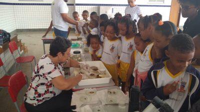 Exposição de animais peçonhentos é realizada em escola da Rede Municipal de Ensino