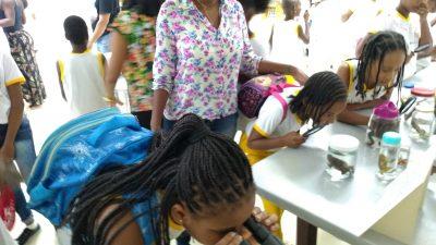 Exposições da Sala Verde encantam alunos da Rede Municipal de Ensino
