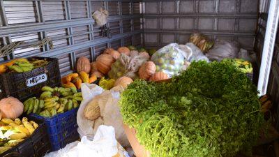 SFC: Programa de Aquisição de Alimentos apresenta resultados