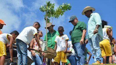SEMAP, SESCOP e SEDUC realizam plantio de árvores em comemoração ao Dia Mundial da Árvore