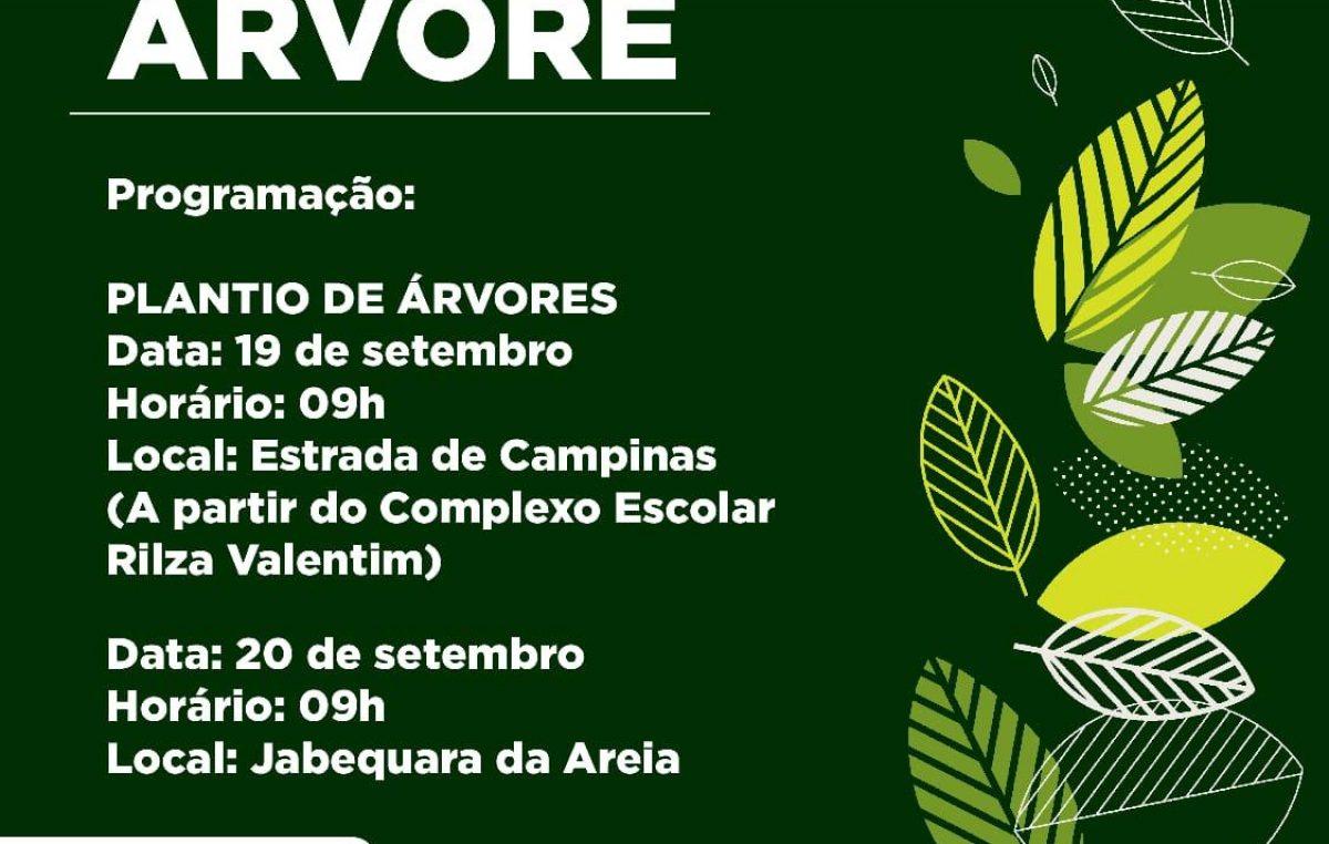 Dia da Árvore será celebrado em São Francisco do Conde