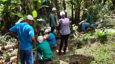 SEMAP ofereceu Curso de Cultivo de Banana