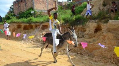 Corrida de Jegue animou o fim de semana dos moradores de Jabequara da Areia