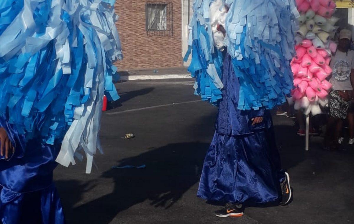 Personagens culturais e carnavalescos encheram de cor o domingo de Carnaval