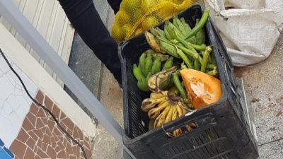 Programa de Aquisição de Alimentos ajuda a reduzir impactos da pandemia de Covid-19