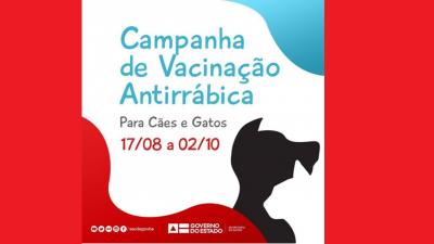 Proteja seus cães e gatos: São Francisco do Conde realiza Campanha de Vacinação contra a raiva animal por bairro