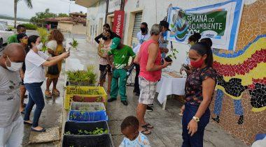 SEMAP realizou a doações de mais de 500 mudas medicinais e alimentícias